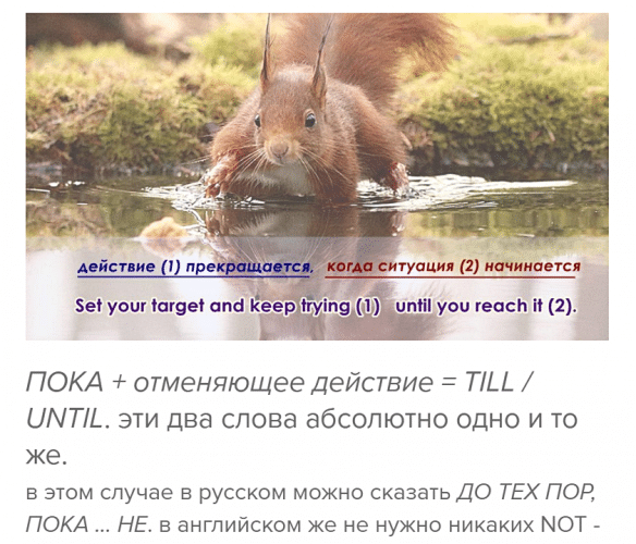 пока while until -